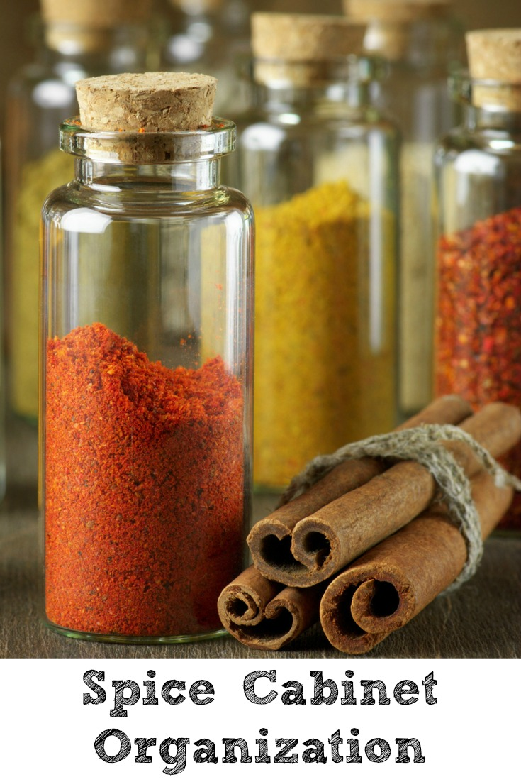 Looking for Spice Cabinet Organization ideas?? Keeping an organized spice cabinet is important to being a frugal cook plus you can use Dollar Tree bins.