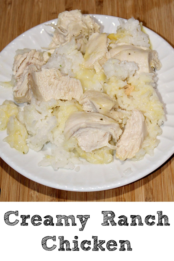 This creamy ranch chicken with only five ingredients is the perfect easy frugal to make for your family on the go! Plus the kids even love it!