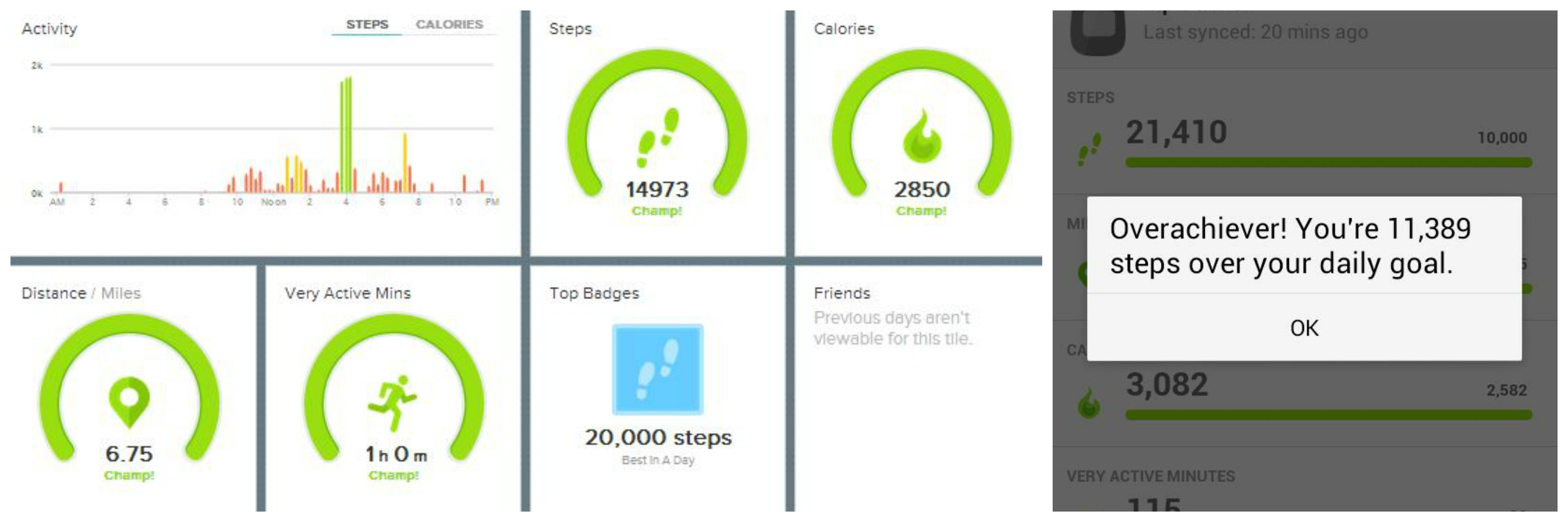 Fitbit Zip! Helps Stay On Track and Motivated For Weight Loss!