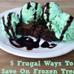 5 Frugal Ways To Save On Frozen Treats