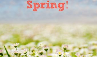 30 Free Things To Do With Kids This Spring!