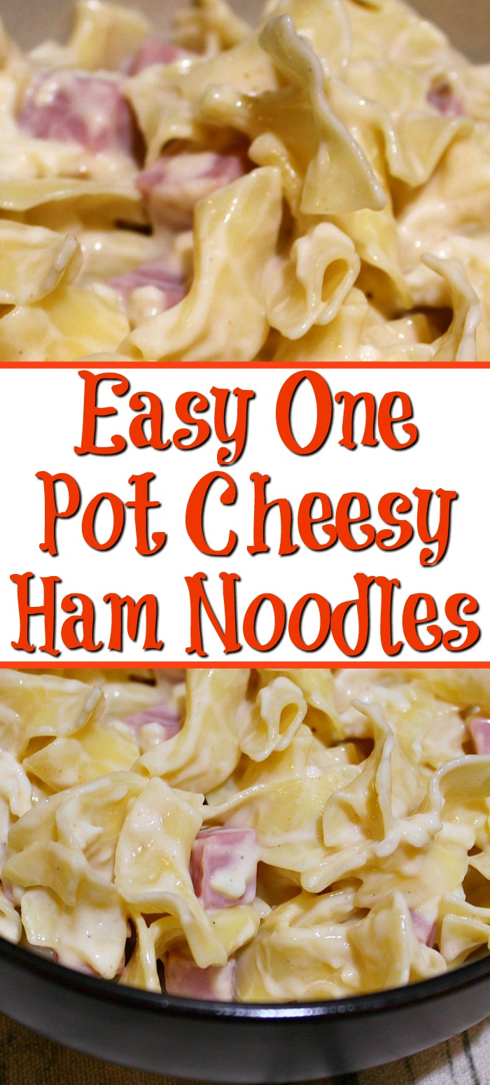 This Easy One Pot Cheesy Ham Noodles Recipe is perfect quick night dinner to make that the kids will love!! Plus it only requires one dish and is budget friendly.