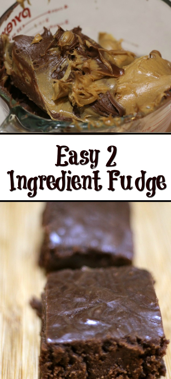 This 2 Ingredient Fudge is a quick and easy dessert to make!!! A frugal easy no bake dessert that is perfect to give as a gift or to make at home!