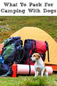 Camping with dogs is a lot of fun! However knowing What To Pack For Camping With Dogs will make the experience more enojyable for both humans and dogs!