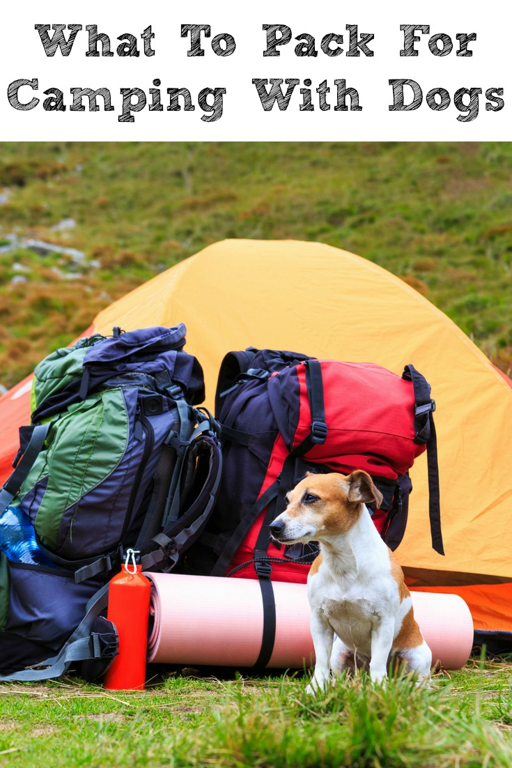 Camping with dogs is a lot of fun! However knowing What To Pack For Camping With Dogs will make the experience more enjoyable for both humans and dogs!