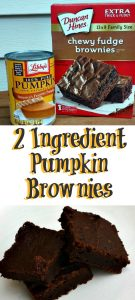 These 2 Ingredient Pumpkin Brownies are a quick and easy low Weight Watchers points dessert! Plus they are fudge-like in consistency!