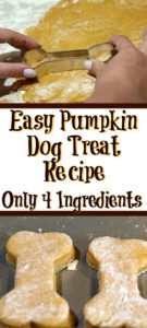 This easy Pumpkin Dog Treat Recipe is perfect to make for your dog! With only four ingredients they are also super quick to whip up a batch.