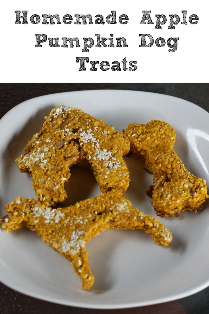 These Homemade Apple Pumpkin Dog Treats are the perfect fall treat to make for your dog! With only 4 ingredients they are easy to make up!