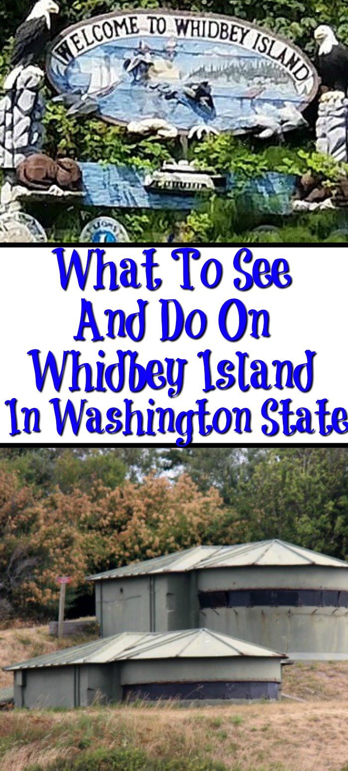 There is so much to see and do on Whidbey Island!! From military bunkers to fishing, hiking, boating, and exploring shops it's the perfect staycation!