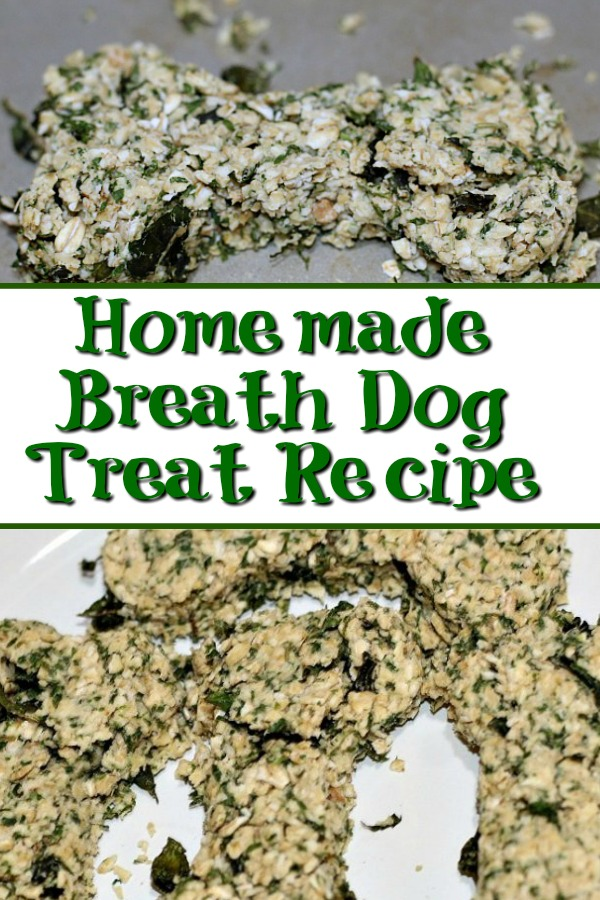 This Homemade Breath Dog Treat Recipe is the perfect treat to make for your dog! Only a couple ingredients know exactly what your dog is eating!