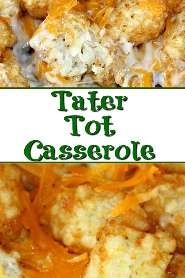 This Tater Tot Casserole Recipe is the perfect frugal easy weeknight recipe!! It will be a hit with the whole family and it is easy to whip up.