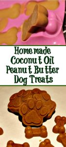 Easy Healthy Homemade Coconut Oil Peanut Butter Dog Treats are perfect to make for your dog! So easy to make and good for them as well!